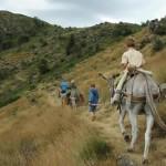 Randonnée avec âne bâté